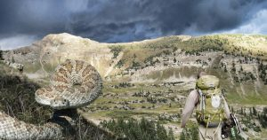 Backcountry and snakes