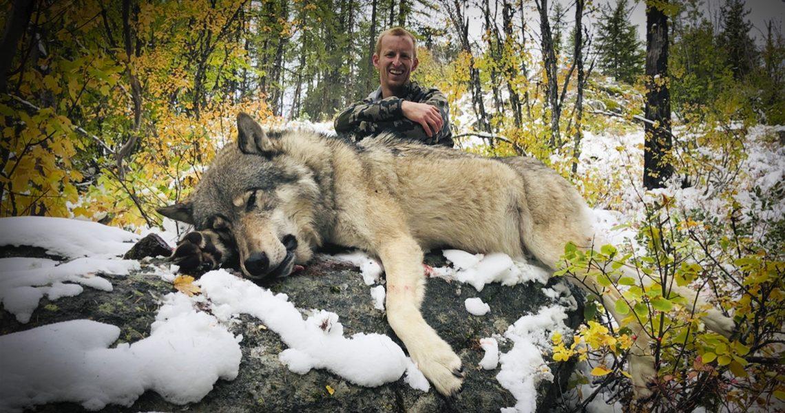 Tom Schneider-Wolf